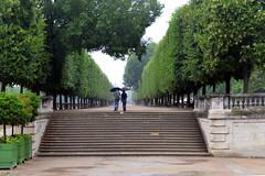 Walking in the Rain (Eddie C3) Tags: parisfrance vacationphotos tuileriesgarden urbanparks jardindestuileries stairs