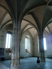 Avignon (lukenotskywalker60) Tags: avignon provance france architecture medieaval unesco heritage site