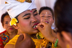 Man cleaning the filed teeth of a teenage boy during the tooth filing ceremony, Bali island, Canggu, Indonesia (Eric Lafforgue) Tags: anxiety asia asian bali bali2606 balinese beliefs canggu ceremony clothing colorimage customs dentist family filing groupofpeople headshot headwear hindu hinduism horizontal incisor indigenouspeople indonesia indonesian indonesianculture manusa mesangih pain painful painfully realpeople rite riteofpassage rites ritual spiritual teeth tooth tradition traditional traveldestination women baliisland