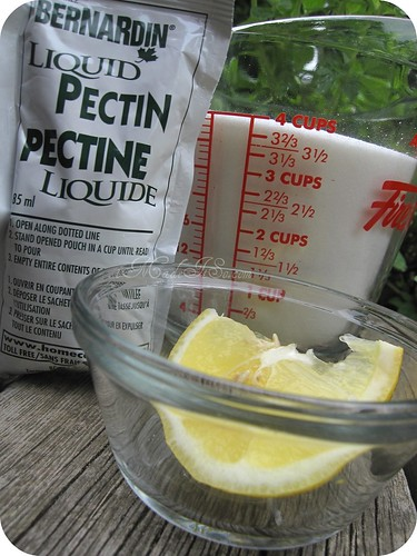 liquid pectin, lemon juice, sugar