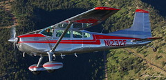 Cessna 185 (Champion Air Photos) Tags: aviation cessna 185 airtoair taildragger skywagon