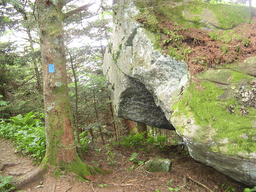 Stone overhang on Grandfather Mountain Trail