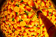 Enjoying the colors of Summer (Thomaniac) Tags: summer orange sun fruits strange yellow backlight lensbaby umbrella mood angle sommer joy fisheye odd gelb motive feeling sonne vignette stimmung perspektive composer distorsion gegenlicht freude schirm sonnenschirm verzerrung canoneos450d thomaniac