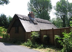 New thatch at Glynde
