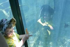 Asher Enjoys the Fish