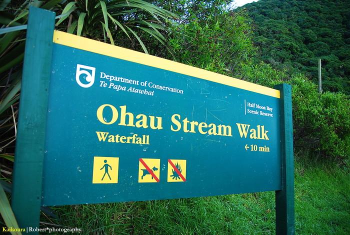 Ohau Stream Walk 02