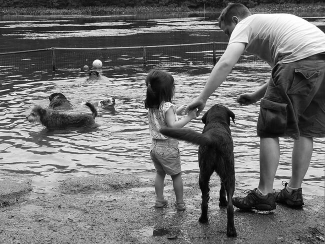Doggie Pond, Prospect Park