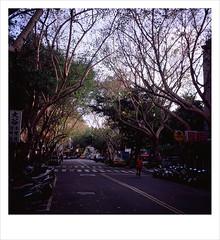 62060009 copy () Tags: 120 6x6 film fuji rvp iso50 adox