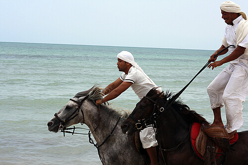 horseback riding in Djerba