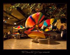 0468 The Dervishes Of Cairo (QuimG) Tags: geotagged dance interiors egypt favorites olympus cairo egipto egipte elcairo alqhirah specialtouch diamondstars quimg losdervichesdeelcairo thedervishesofcairo thedavincitouch quimgranell joaquimgranell danzasuf obresdart