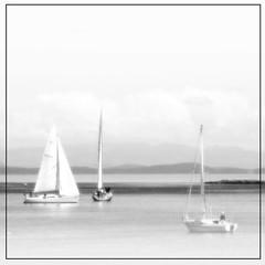 I must down to the seas again (ZedZaP) Tags: ocean city travel sea summer vacation holiday canada tourism beach landscape bay boat sailing bc pacific yacht sails peaceful canadian vancouverisland maritime nautical tranquil victoriabc nationalgeographic uplands zedzap