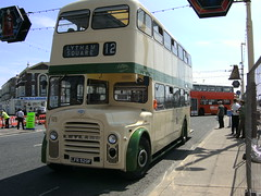 Cream and Green Double Decker bus (friskierisky) Tags: england bus buses coach transport rearview oldtimers blackpool omnibus sunnyday oldfashioned dayout oldbus backintime motorvehicles totallytransport oldcoach alltypesoftransport blackpoolbus transportintheframe