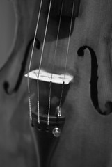 Violin (Craig Jewell Photography) Tags: old bridge music iso800 dof violin instrument hanging strings pegs peg scroll fingerboard f20 stringed fholes pegbox 120sec pentaxk10d smcpentaxfa50mmf14 cpjsm craigjewellphotography