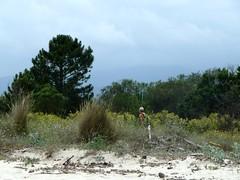 Marche le long de l'étang de Palu