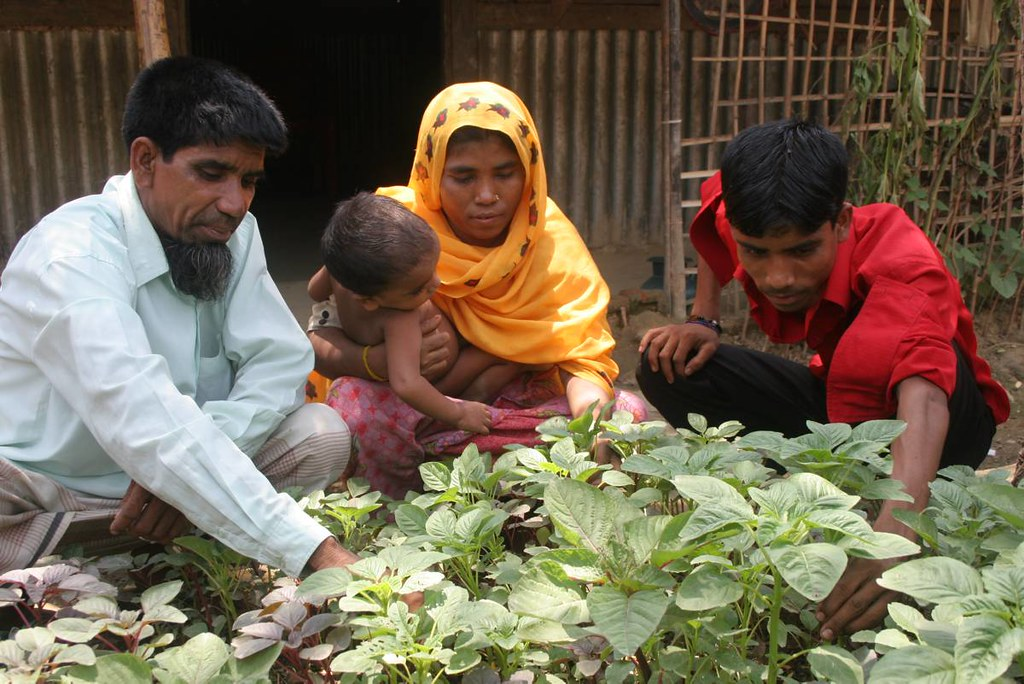 UNHCR News Story: Making ProGres in Bangladesh: a database yields new lives for refugees