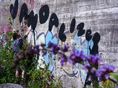 vandalize (l.e.t.) Tags: street boy streetart art germany rebel graffiti riot artwork stencil sticker paint artist contemporary kunst spray dsseldorf vandalize
