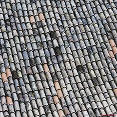 Motovun rooftops (DAMIR HUREMOVIC | PHOTOGRAPHY) Tags: travel rooftop nikon rooftops croatia nikkor istria istra d300 motovun 85mm14 montona