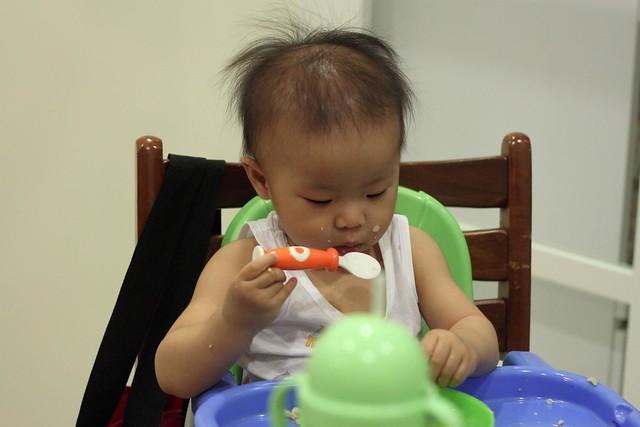 小花猫吃饭 | flickr – 相片分享!