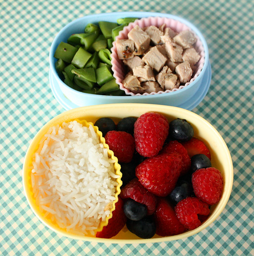 Toddler Bento #31: July 7, 2010