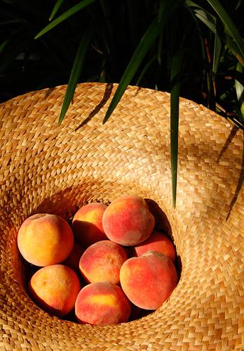 On Seasonal and Local Fruit