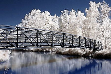 02_infrared_photography_1