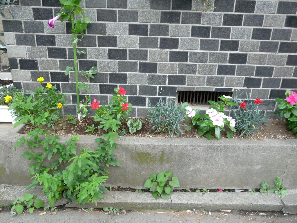 Concrete Curbside Planter