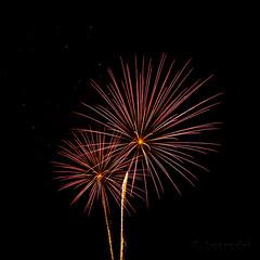 Fuegos (Losrodri) Tags: espaa color colors andaluca fireworks feria olympus colores costumbres fuegosartificiales mlaga alegra e510 olympuse510 losrodri benalmdenacostamlaga