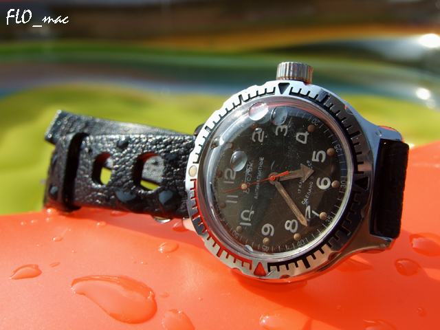 Feu de vos Vostok Amphibia 4804068786_24d78c7f2a_o