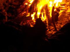 roasting marshmallows (On Bradstreet) Tags: fire firepit summerevenings unschooling familyrituals outdoorskills keepingitsimple eveningsathome backyardfirepit simplefirepit kidsbuildingfire