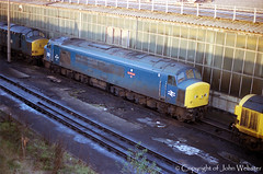 45145 'Scylla' at Tinsley TMD (blackwatch55013) Tags: scylla class45 45145 tinsleytmd