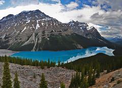 Peyto Lake - Banff National Park