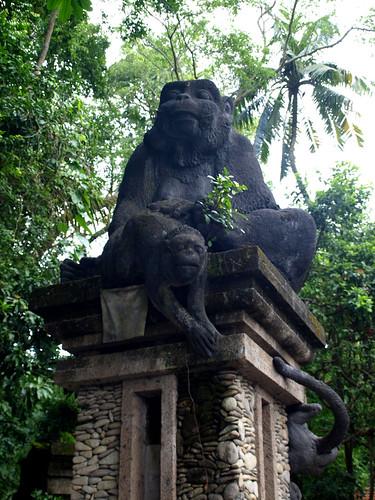 Monkey Forest (2)