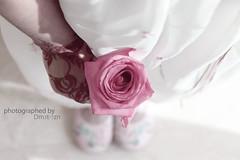 ودي اخونك لكن القلب مايخون وان جيت اخونك زاد حبك وصنته (Ðм3т-7zή ™) Tags: pink flower for you ان القلب لكن حبك جيت زاد ودي اخونك حنه أخونك مايخون وصنته dm3t7zn