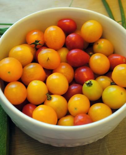 One Day Tomato Harvest