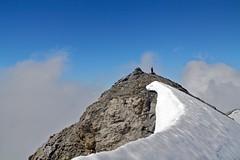 Reissen Nollen, 3003m (Joachim S.) Tags: schnee mountains alps schweiz berge fels alpen eis hochtour mountaineer bergsteigen gipfel bergtour bergsteiger kantonbern feldmoos reissendnollen