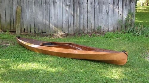 Wood Duck 12