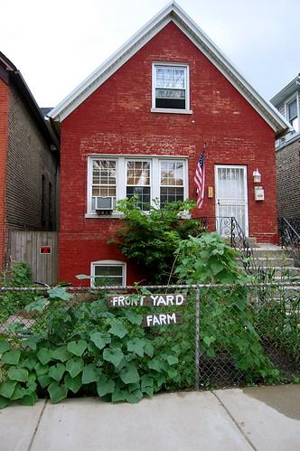 Griffin Yard Farm - 6 weeks in
