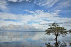 Costa Rica Gulf of Dulce