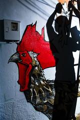 Cantagalo/RJ (Ratão Diniz) Tags: muro horizontal arquitetura brasil riodejaneiro cores graffiti casa mural rj arte grafiti sombra noturna noite cor julho favela morro desenho pintura painel 2010 grafite galo artederua comunidade zonasul davi moradia arteurbana cantagalo comunidadepopular morrodocantagalo espaçopopular rataodiniz morrocantagalo projeçao mafia44 zonasuldorio davibaltar julhode2010