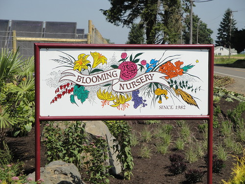 Blooming Nursery signage