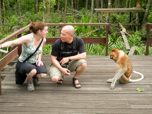 Labuk Bay Proboscic Monkey Reserve