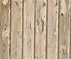 lead testing, lead in soil, lead in paint