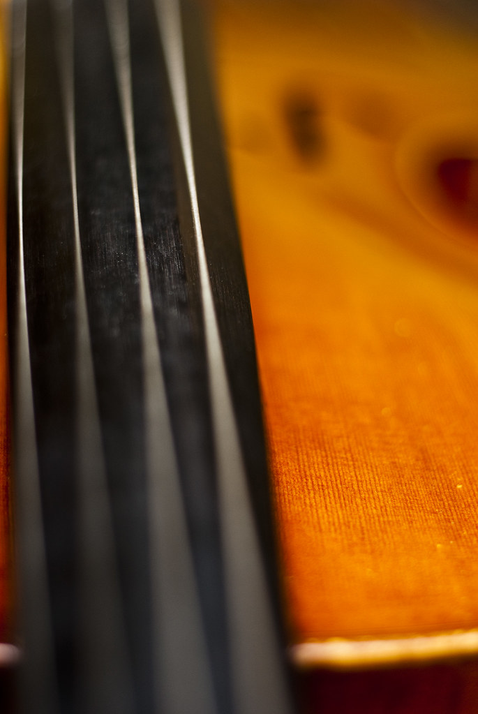 The Cello - Finger Board/Strings