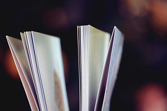 1 of 365 (.Violet.) Tags: paper book cookbook dof pages bokeh project365 365days