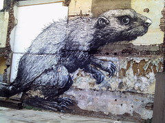 ROA Beaver in Hackney Road - 5 (Cybermyth13) Tags: street city uk england urban streetart london art animal wall painting giant fun graffiti mural funny drawing beaver eastlondon roa hackneyroad londonist roabeaver carpafk