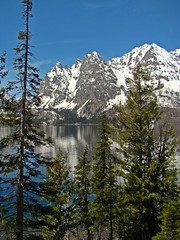 A Little Slice of Heaven on Earth (dbushue) Tags: trees lake mountains nature reflections landscape spring scenery snowcapped peaks heavenly 2009 rugged grandtetonnationalpark jennylake naturesfinest coth supershot naturesgarden itsawonderfulworld mywinners theunforgettablepictures absolutelystunningscapes damniwishidtakenthat dragondaggerphoto flickrclassique yourwonderland coth5 mygearandmepremium mygearandmebronze mygearandmesilver karasclassics dailynaturetnc11 riversandlakestnc11