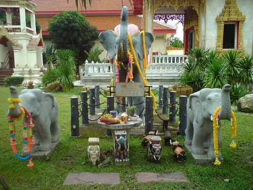 2010-07-26 泰國普吉島拜拜DSC01045