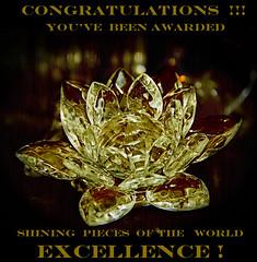 Shining Excellence Award