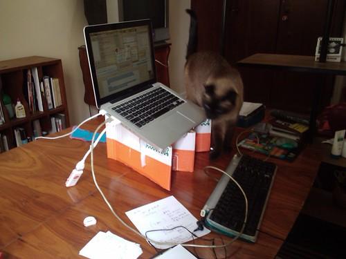 Home office - suporte de laptop feito com caixa de papelão