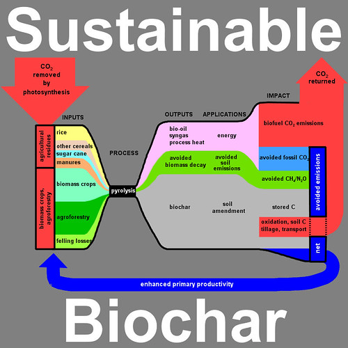 Biochar Graphic